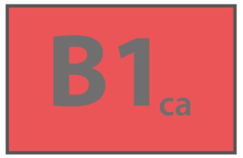 CPR B1ca